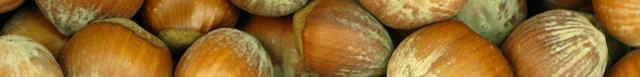 nødder